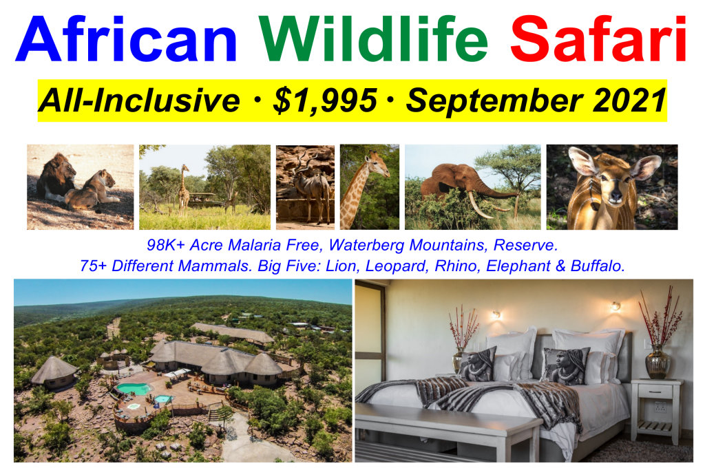 South Africa Wildlife Safari - June & September from Boston & New York - $1,995